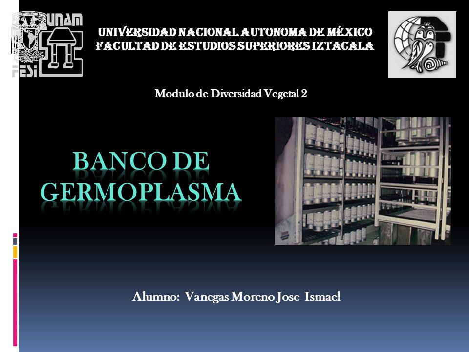 UNIVERSIDAD NACIONAL AUTONOMA DE MÉXICO FACULTAD DE ESTUDIOS SUPERIORES IZTACALA Modulo de Diversidad Vegetal 2 Alumno: Vanegas Moreno Jose Ismael