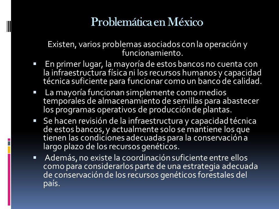 Problemática en México Existen, varios problemas asociados con la operación y funcionamiento. En primer lugar, la mayoría de estos bancos no cuenta co