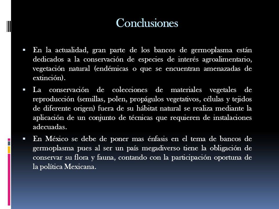 Conclusiones En la actualidad, gran parte de los bancos de germoplasma están dedicados a la conservación de especies de interés agroalimentario, veget