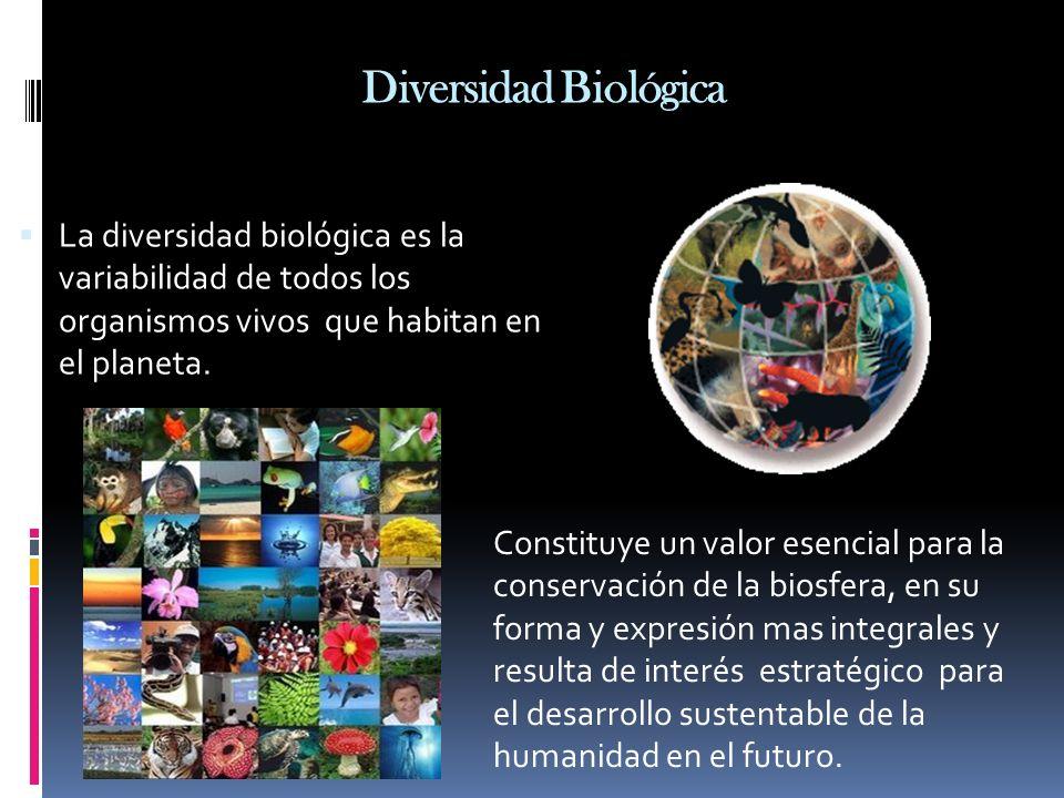Diversidad Biológica La diversidad biológica es la variabilidad de todos los organismos vivos que habitan en el planeta. Constituye un valor esencial