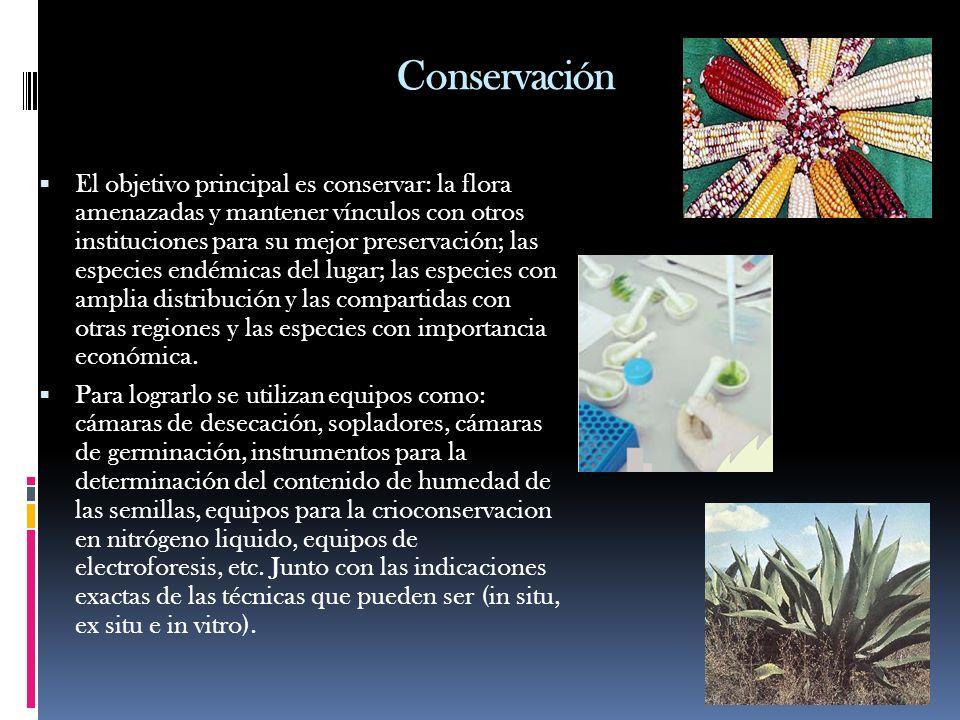 Conservación El objetivo principal es conservar: la flora amenazadas y mantener vínculos con otros instituciones para su mejor preservación; las espec