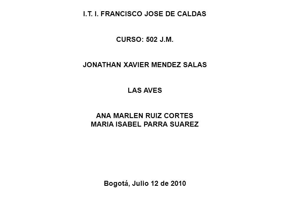I.T. I. FRANCISCO JOSE DE CALDAS CURSO: 502 J.M. JONATHAN XAVIER MENDEZ SALAS LAS AVES ANA MARLEN RUIZ CORTES MARIA ISABEL PARRA SUAREZ Bogotá, Julio