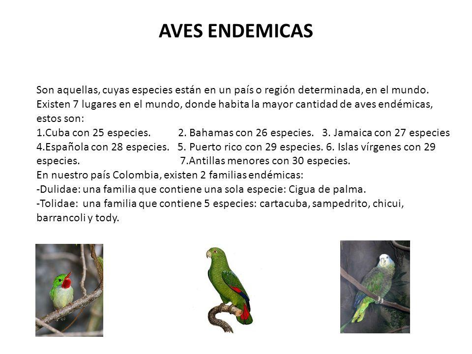 AVES MIGRATORIAS Son aquellas, que viajan desde Norteamérica, hasta centro y Suramérica; temporalmente o de por vida; buscando mejorar sus condiciones de vida.
