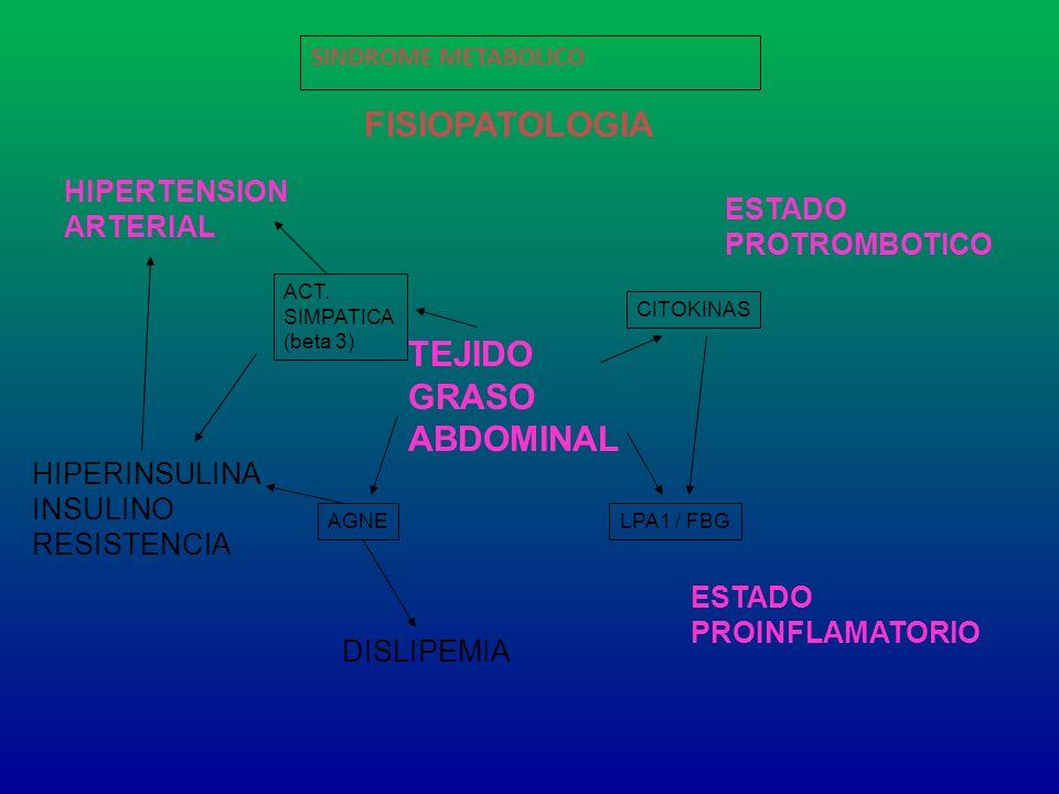 SINDROME METABOLICO FISIOPATOLOGIA TEJIDO GRASO ABDOMINAL HIPERINSULINA INSULINO RESISTENCIA HIPERTENSION ARTERIAL DISLIPEMIA ESTADO PROTROMBOTICO EST