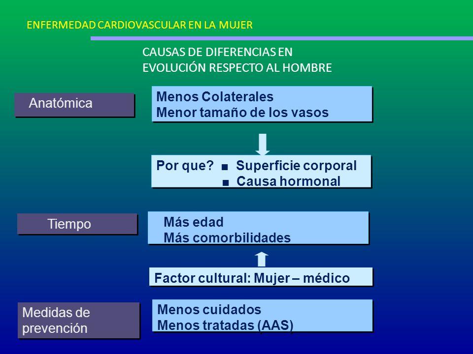 CAUSAS DE DIFERENCIAS EN EVOLUCIÓN RESPECTO AL HOMBRE Anatómica Menos Colaterales Menor tamaño de los vasos Menos Colaterales Menor tamaño de los vaso