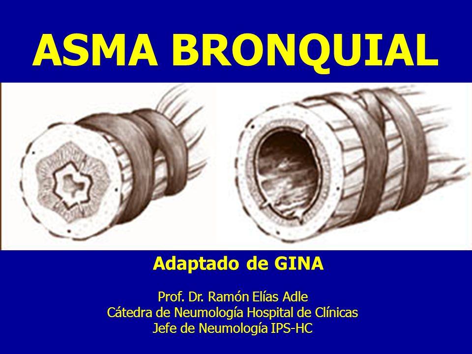 ASMA BRONQUIAL Adaptado de GINA Prof.Dr.