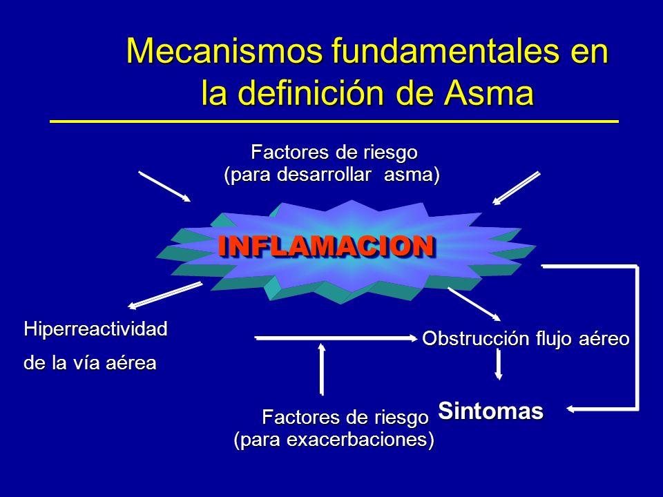 Mecanismos fundamentales en la definición de Asma Factores de riesgo Factores de riesgo (para desarrollar asma) INFLAMACIONINFLAMACION Hiperreactividad de la vía aérea Obstrucción flujo aéreo Factores de riesgo Factores de riesgo (para exacerbaciones) Sintomas
