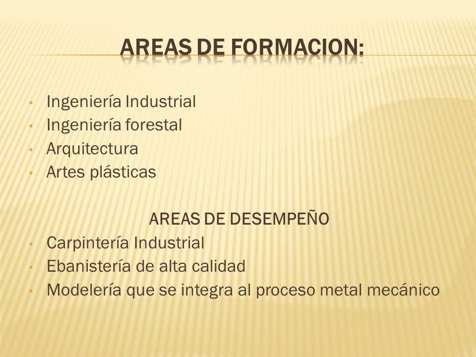 Ingeniería Industrial Ingeniería forestal Arquitectura Artes plásticas AREAS DE DESEMPEÑO Carpintería Industrial Ebanistería de alta calidad Modelería