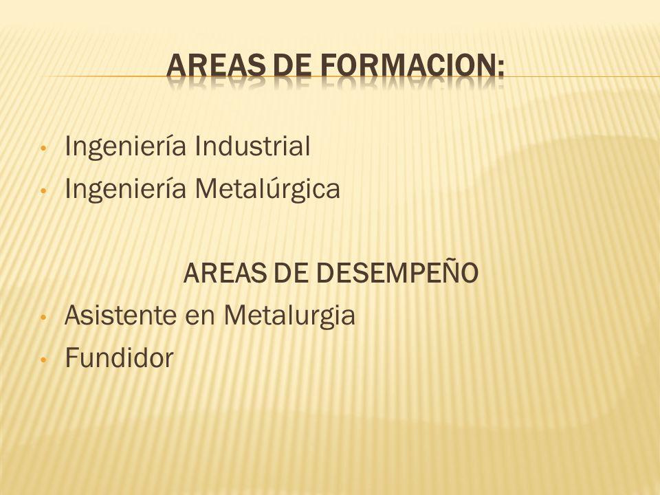 Ingeniería Industrial Ingeniería Metalúrgica AREAS DE DESEMPEÑO Asistente en Metalurgia Fundidor