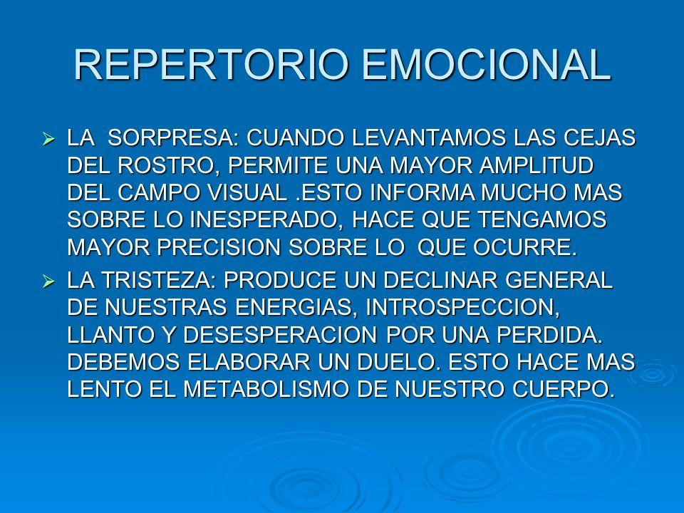 REPERTORIO EMOCIONAL LA SORPRESA: CUANDO LEVANTAMOS LAS CEJAS DEL ROSTRO, PERMITE UNA MAYOR AMPLITUD DEL CAMPO VISUAL.ESTO INFORMA MUCHO MAS SOBRE LO