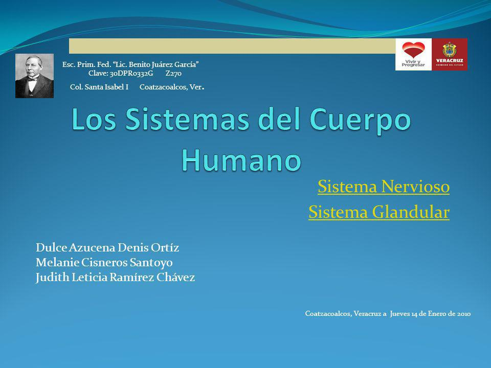 Sistema Nervioso Sistema Glandular Esc. Prim. Fed. Lic. Benito Juárez García Clave: 30DPR0332G Z270 Col. Santa Isabel I Coatzacoalcos, Ver. Dulce Azuc