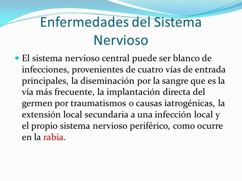 Enfermedades del Sistema Nervioso El sistema nervioso central puede ser blanco de infecciones, provenientes de cuatro vías de entrada principales, la