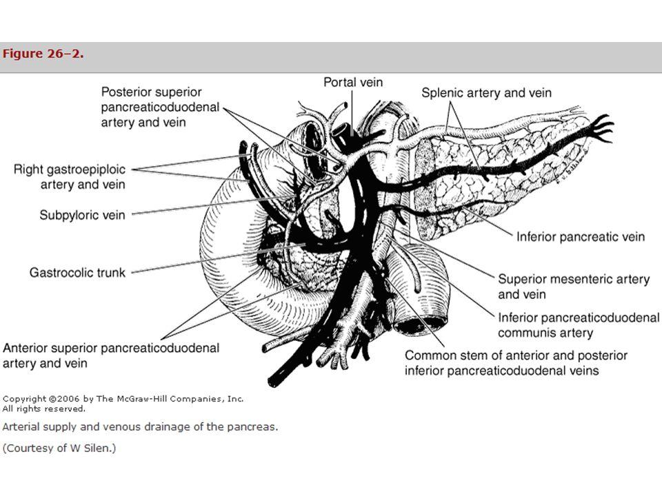 Pancreatitis aguda Ecografía.