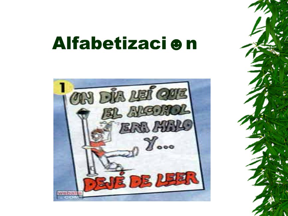 Alfabetizacin