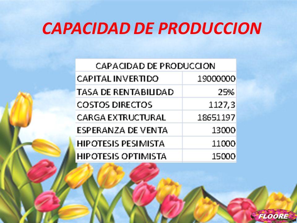 CAPACIDAD DE PRODUCCION FLOORE