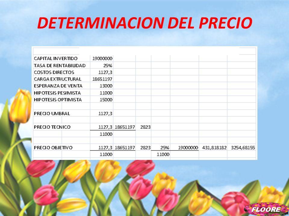 DETERMINACION DEL PRECIO FLOORE