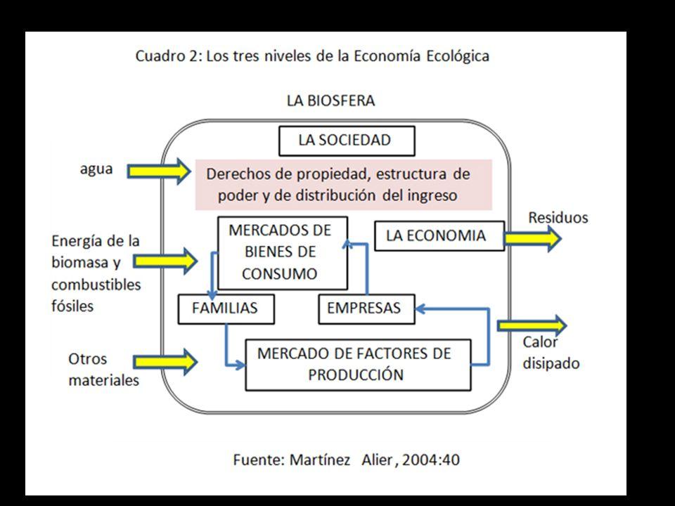 El ecologismo de los pobres, Martínez Alier (2004)