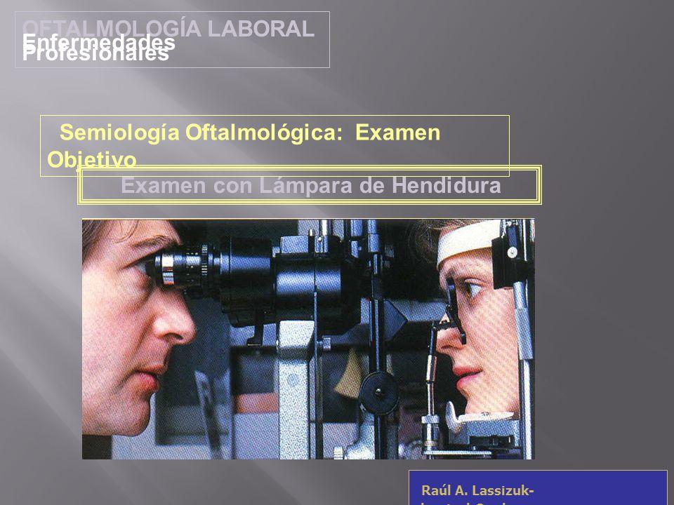 OFTALMOLOGÍA LABORAL Enfermedades Profesionales Raúl A. Lassizuk- rlassizuk@yahoo.com Examen con Lámpara de Hendidura Semiología Oftalmológica: Examen