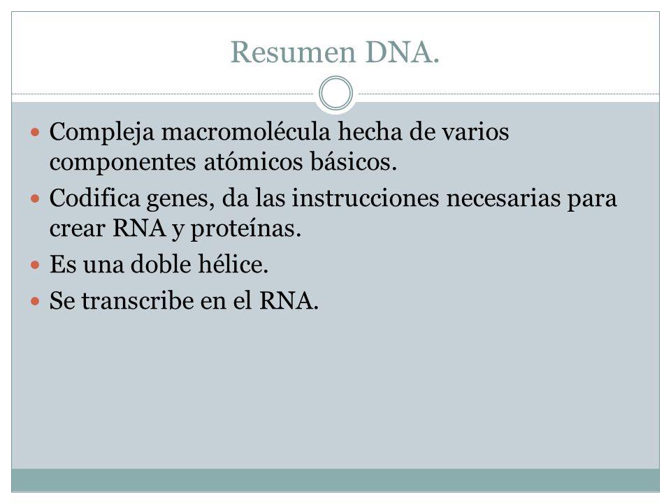 Resumen DNA. Compleja macromolécula hecha de varios componentes atómicos básicos. Codifica genes, da las instrucciones necesarias para crear RNA y pro