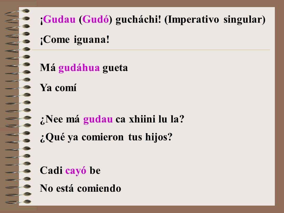 ¡Gudau (Gudó) gucháchi.(Imperativo singular) Má gudáhua gueta ¿Nee má gudau ca xhiini lu la.