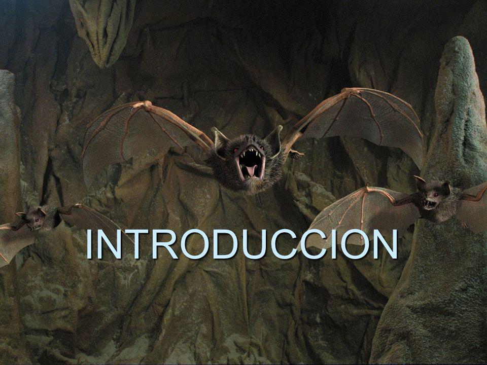 Todos los murciélagos utilizan ultrasonidos, que producen con sus laringes.
