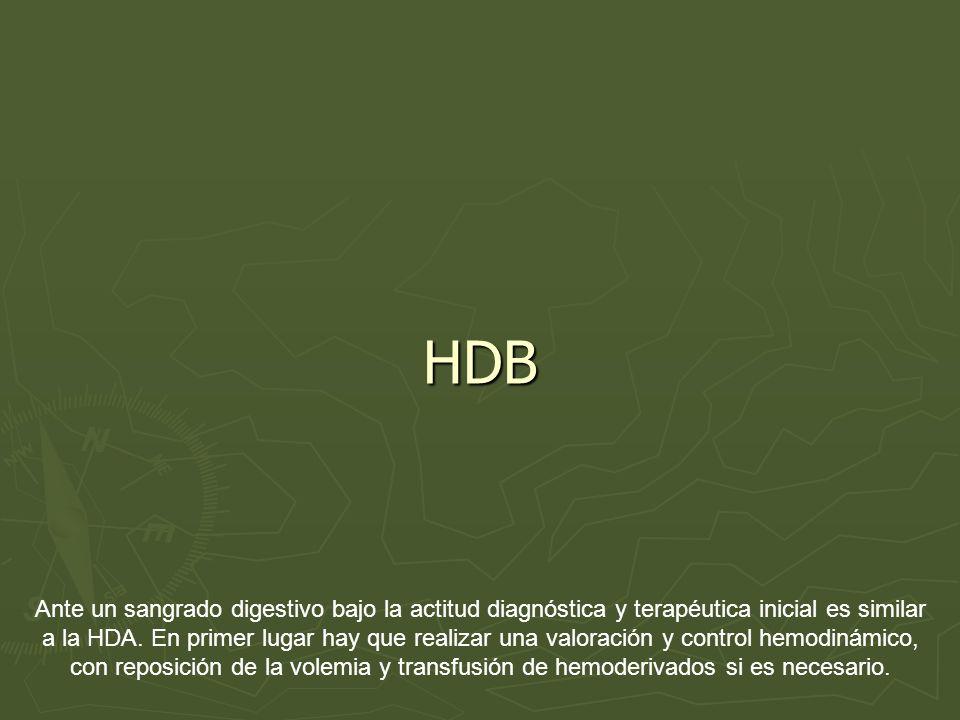 HDB Ante un sangrado digestivo bajo la actitud diagnóstica y terapéutica inicial es similar a la HDA. En primer lugar hay que realizar una valoración