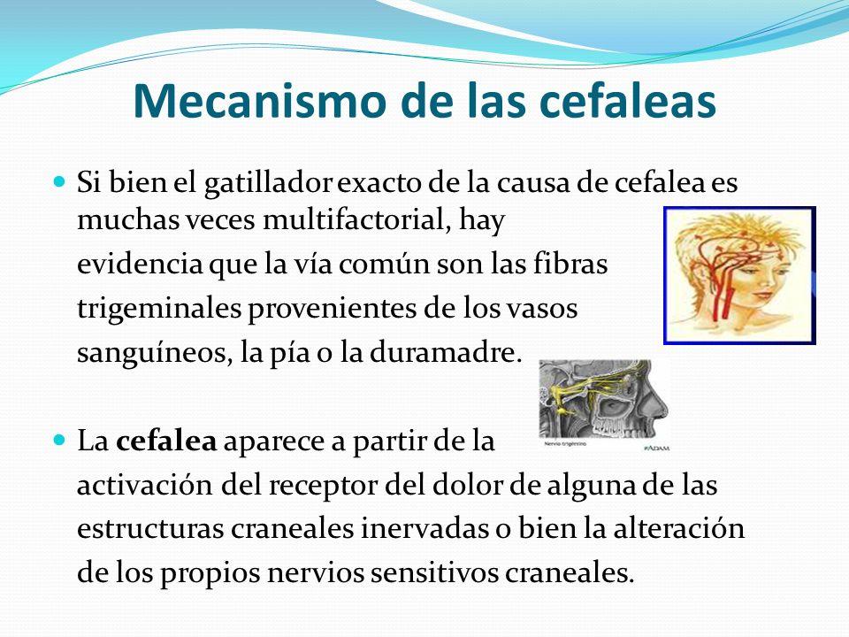 Mecanismo de las cefaleas Si bien el gatillador exacto de la causa de cefalea es muchas veces multifactorial, hay evidencia que la vía común son las f