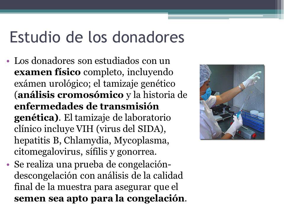 Estudio de los donadores Los donadores son estudiados con un examen físico completo, incluyendo exámen urológico; el tamizaje genético (análisis cromo