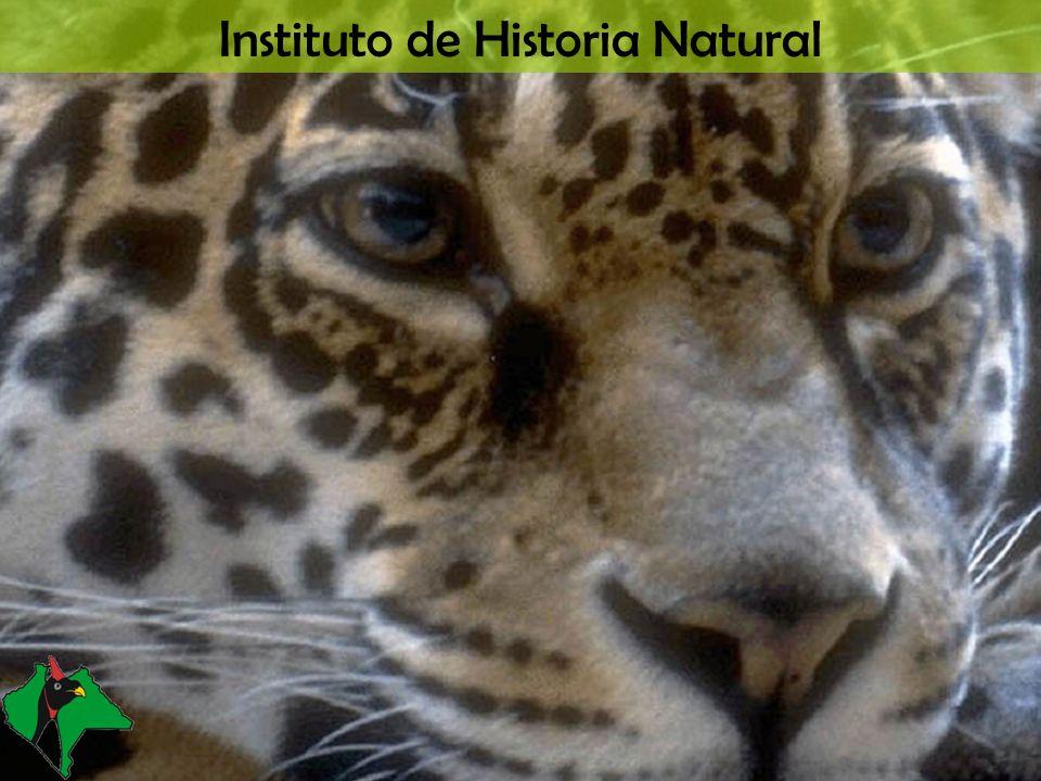 Instituto de Historia Natural