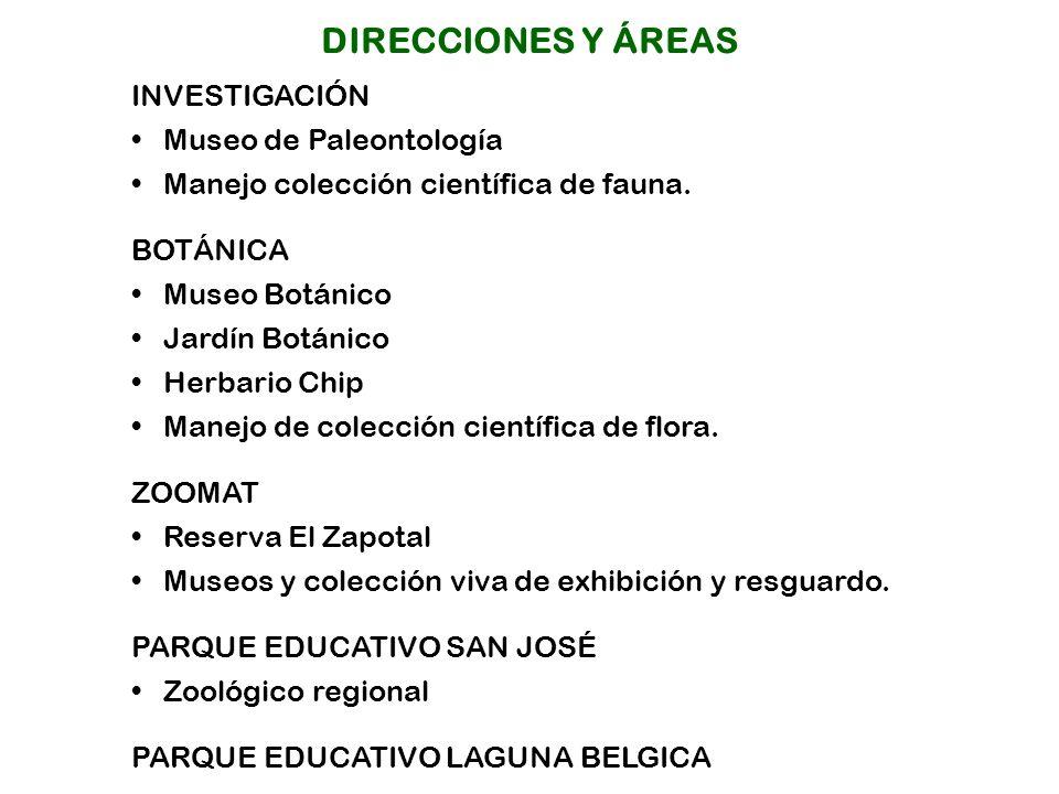 INVESTIGACIÓN Museo de Paleontología Manejo colección científica de fauna.