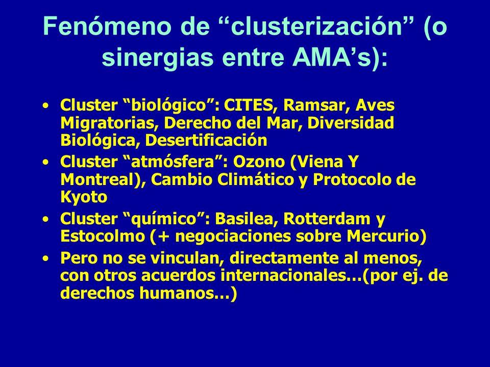 Fenómeno de clusterización (o sinergias entre AMAs): Cluster biológico: CITES, Ramsar, Aves Migratorias, Derecho del Mar, Diversidad Biológica, Desert