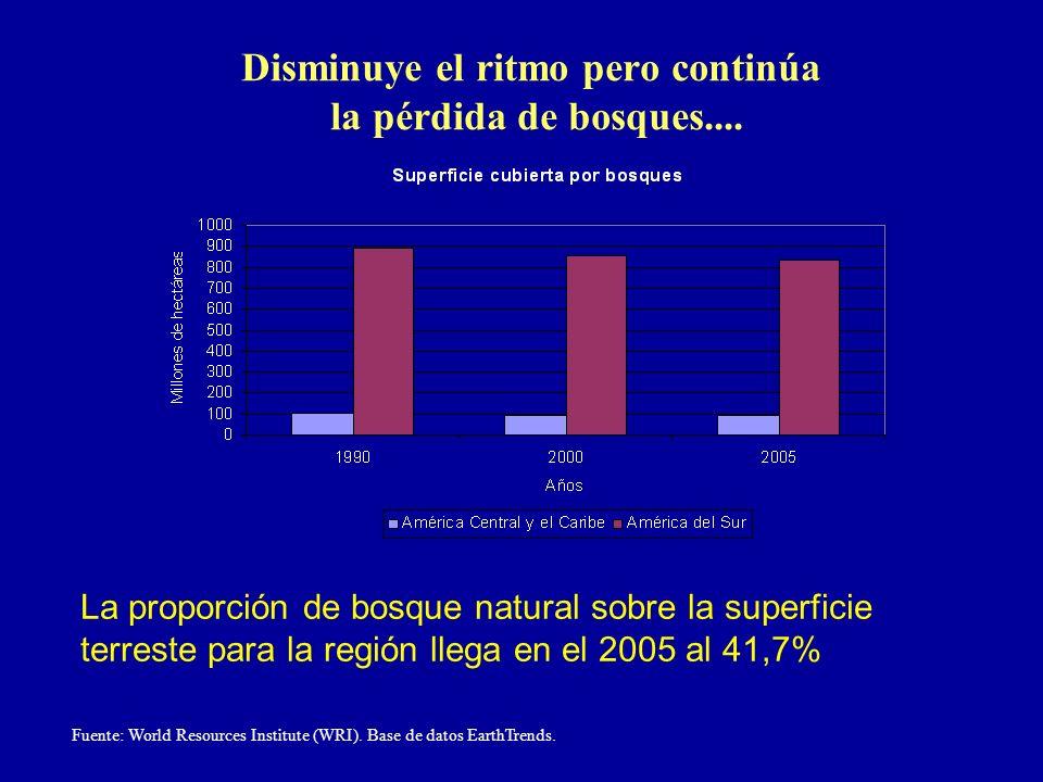 Disminuye el ritmo pero continúa la pérdida de bosques.... Fuente: World Resources Institute (WRI). Base de datos EarthTrends. La proporción de bosque
