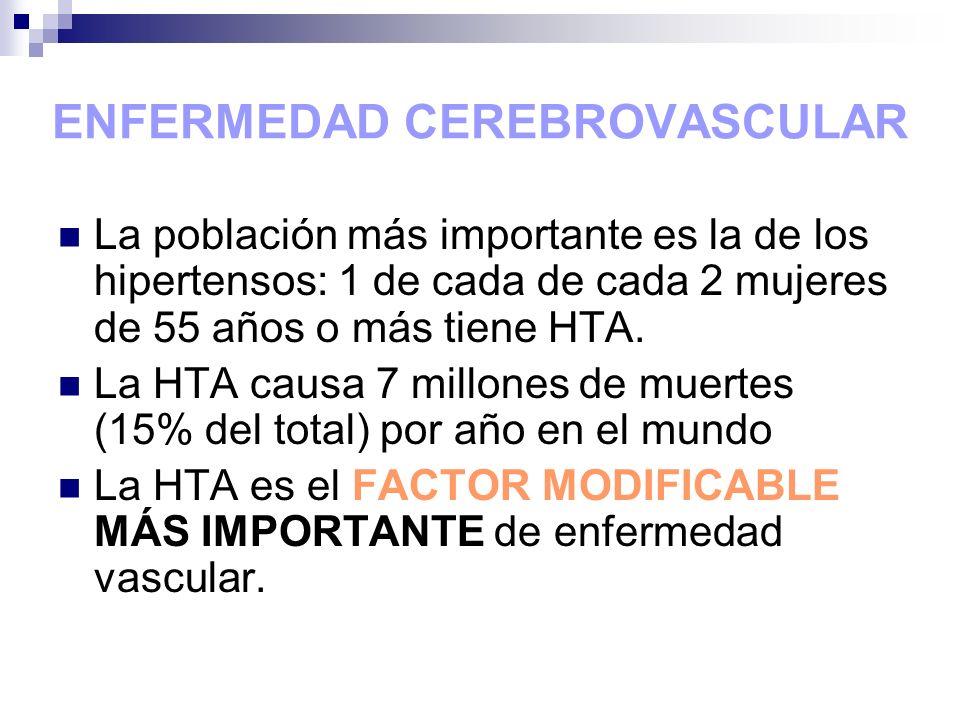 ENFERMEDAD CEREBROVASCULAR La población más importante es la de los hipertensos: 1 de cada de cada 2 mujeres de 55 años o más tiene HTA. La HTA causa