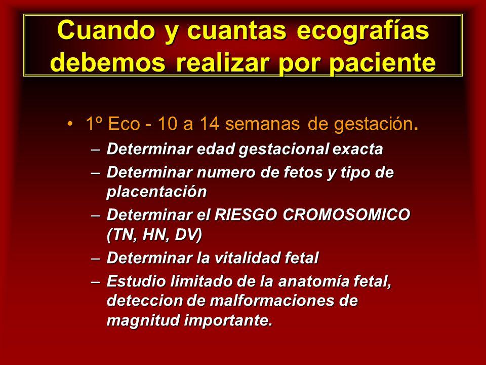 Cuando y cuantas ecografías debemos realizar por paciente 1º Eco - 10 a 14 semanas de gestación.1º Eco - 10 a 14 semanas de gestación. –Determinar eda