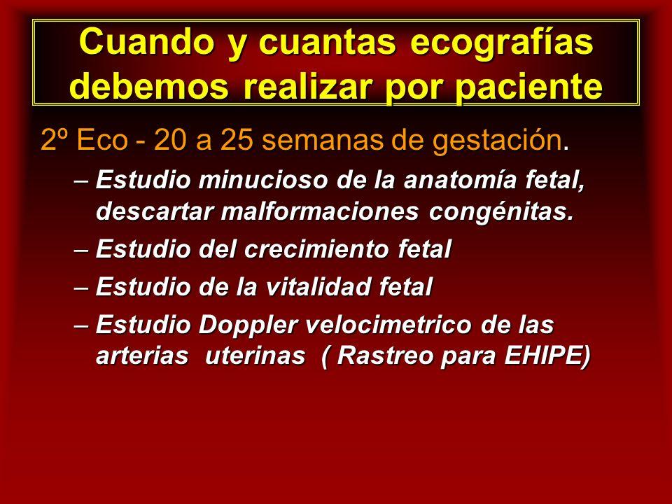 Cuando y cuantas ecografías debemos realizar por paciente 2º Eco - 20 a 25 semanas de gestación. –Estudio minucioso de la anatomía fetal, descartar ma