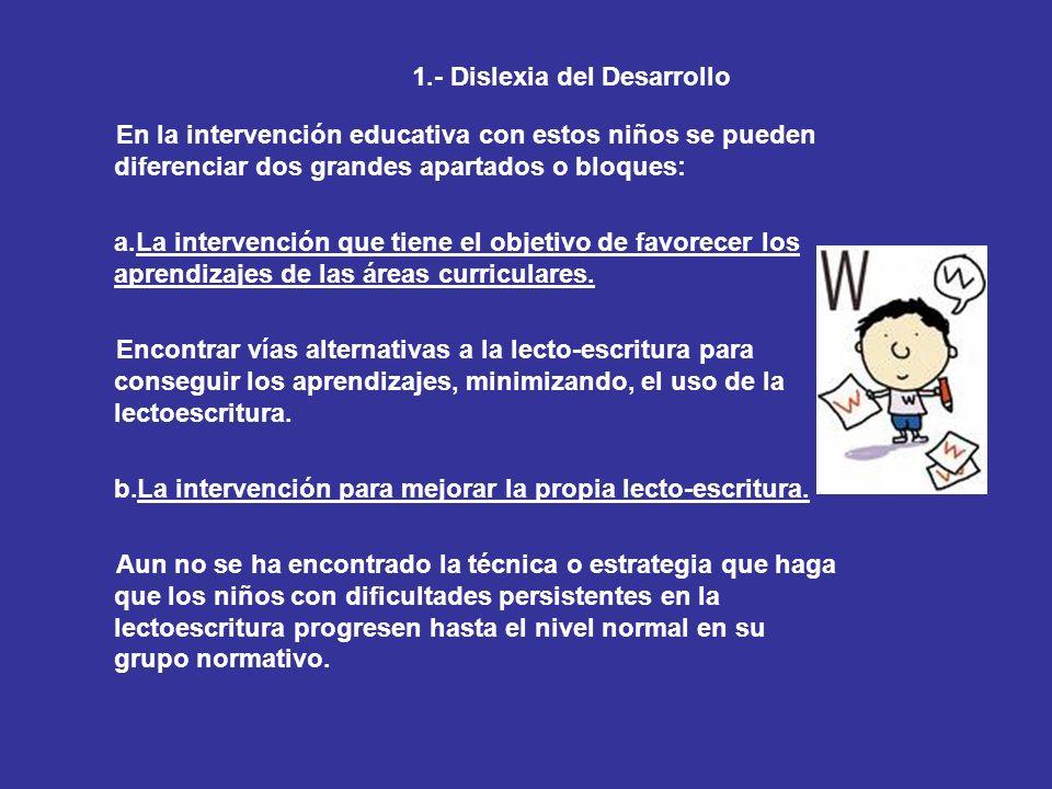 1.- Dislexia del Desarrollo En la intervención educativa con estos niños se pueden diferenciar dos grandes apartados o bloques: a.La intervención que