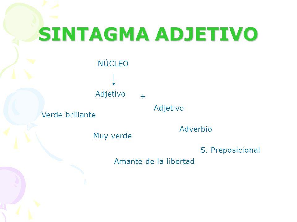 SINTAGMA ADJETIVO NÚCLEO Adjetivo + Adverbio S. Preposicional Verde brillante Muy verde Amante de la libertad