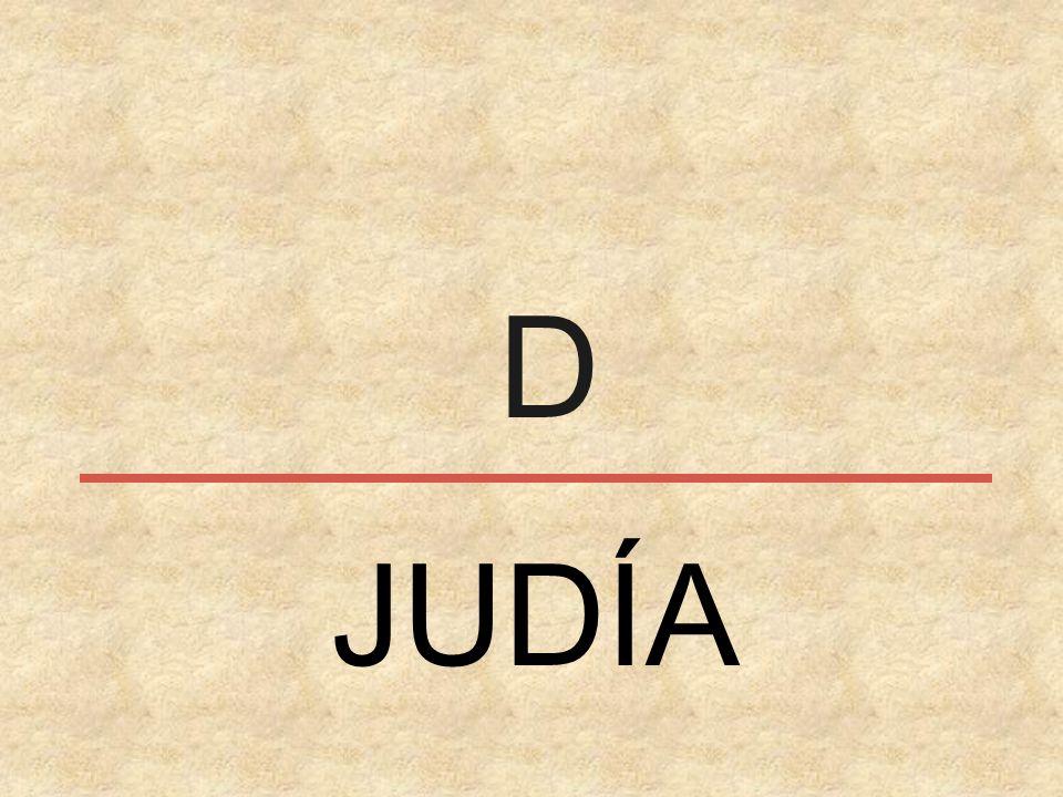 J JUDÍA
