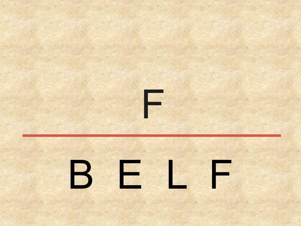 B E L F F