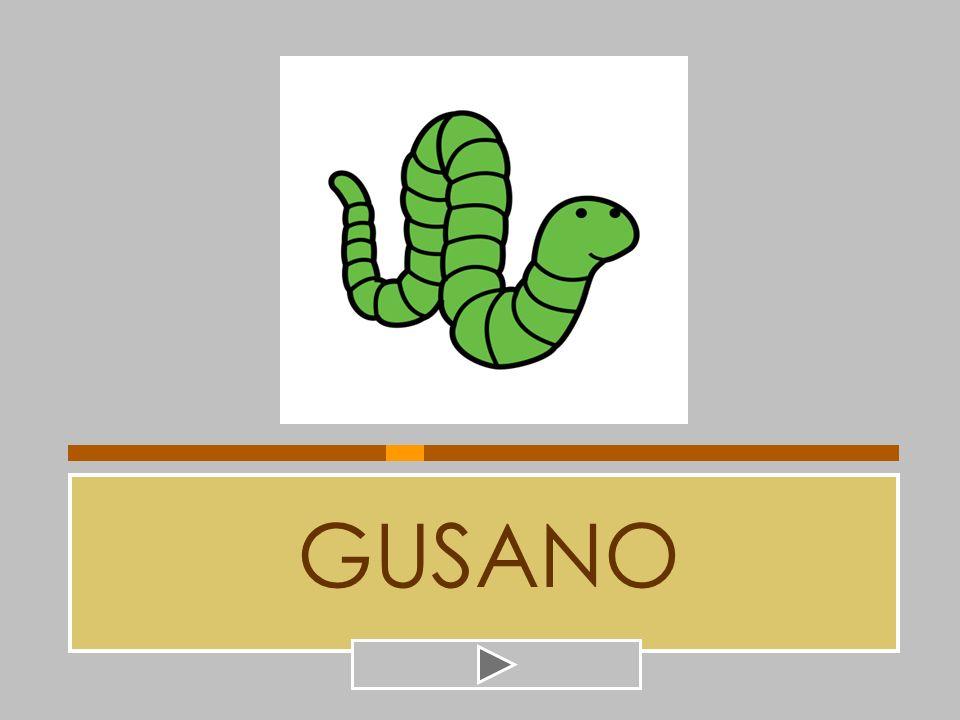 GUSANO BUTANO GUANTE MARRANO GUASÓN GUAPO