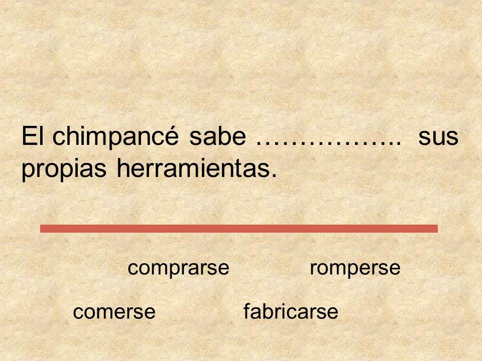 Completa las siguientes frases