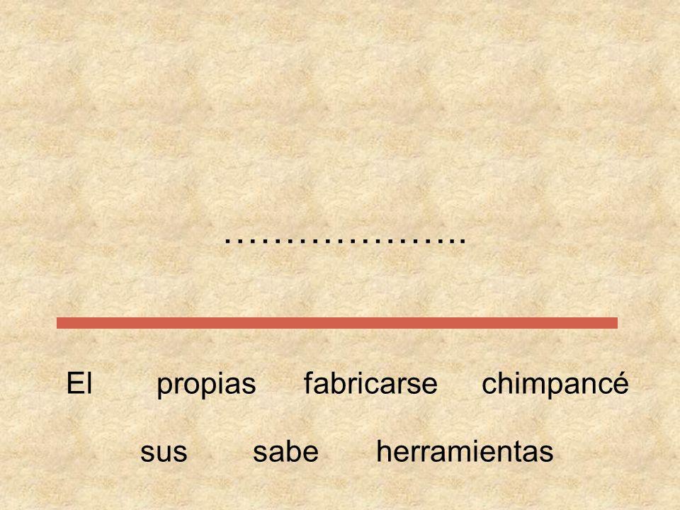 Ordena las siguientes frases