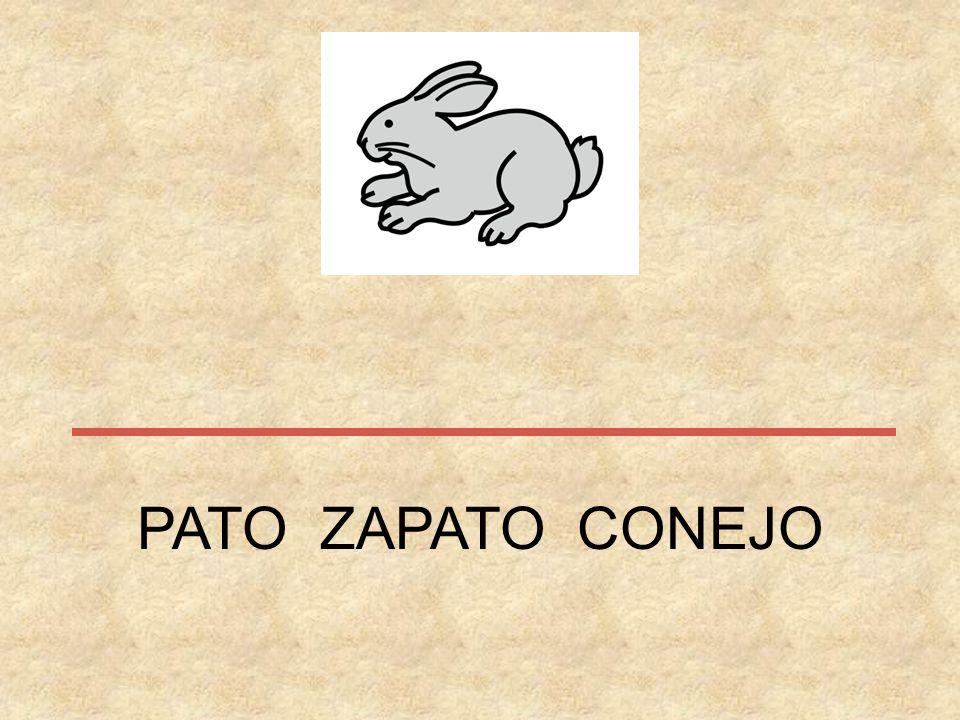 CHIMENEA CHAPA CHOPO CHINCHETA