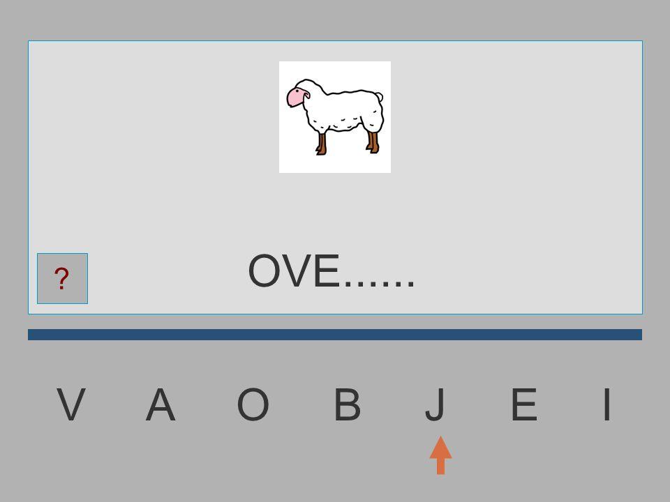 V A O B J E I OV......... ?