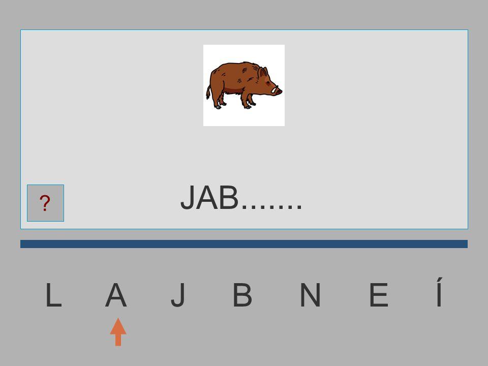 L A J B N E Í JA.......... ?