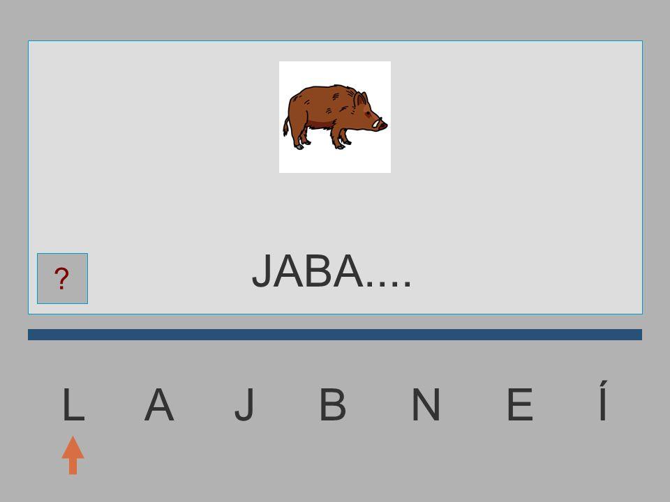 L A J B N E Í JAB....... ?