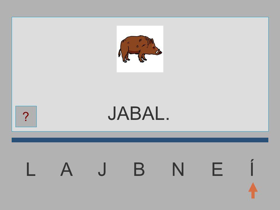 L A J B N E Í JABA.... ?