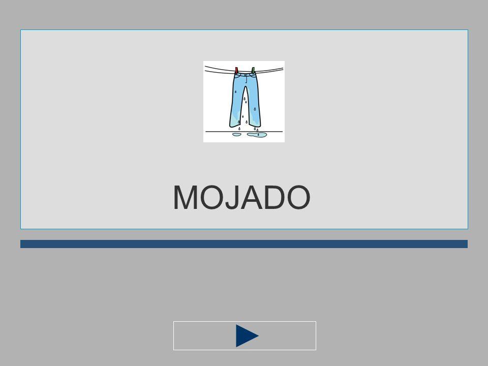 M A O D N J I MOJAD... ?