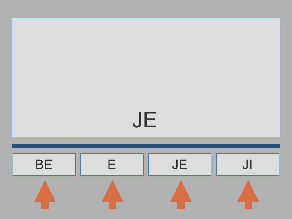 V A O B J E I OVEJ... ?