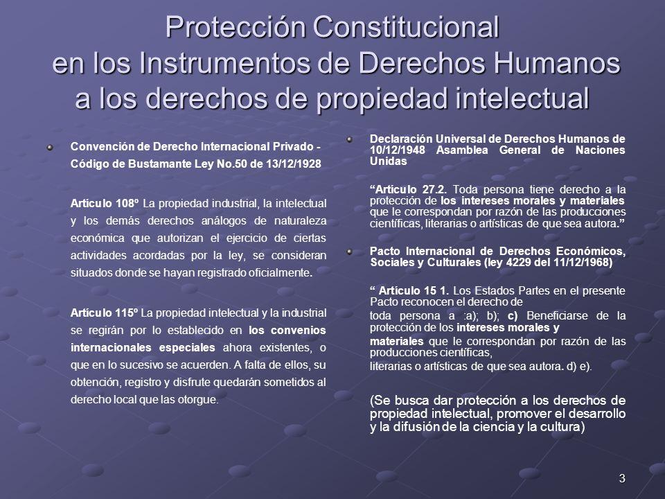 4 Protección Constitucional en los Instrumentos de Derechos Humanos a los derechos de propiedad intelectual Protección Constitucional en los Instrumentos de Derechos Humanos a los derechos de propiedad intelectual Declaración Americana de los Derechos y Deberes del Hombre, realizada en Bogotá, Colombia 1948 Artículo XIII.